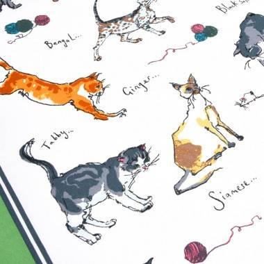 Floyd Cats